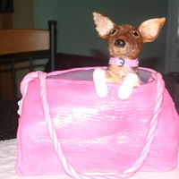 Legally Blonde Cast Party Cake This is the purse from Legally Blonde carrying Bruiser.Body of purse was cake cover with textured fondant. Bruiser was constructed of Rice...
