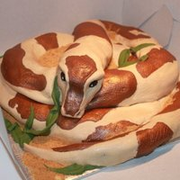 Snake Cake   for the birthday of a friend who like snake