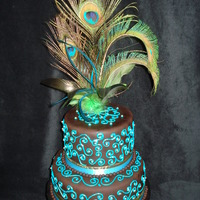 Peacock Feathers Cake I bought the feathers as a decoration for my home, but looking at them inspired me to create a cake :)