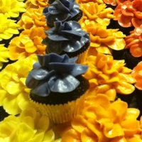 Flower Cupcakes Not sure what type of flower it is but they are so pretty and super easy to make. I made these for a cancer ride my local fire station was...