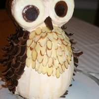 Owl Cake 2Nd Birthday