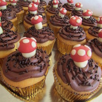 Toadstool Cupcakes :) These are Yellow cake, with whipped chocolate icing with chocolate frosting and molding chocolate toadstools.