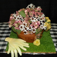"Bangor Garden Show  I entered this cake in the local Garden Show~Cake Contest. The ""Terra Cotta Pot"" is a chocolate cake wrapped in fondant and the..."