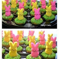 Easter Cupcakes! I made this cupcakes for my son's class. They loved them. Vanilla cupcakes with dulce de leche frosting.