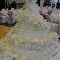 Lacy This 6 tier wedding cake was for a young women who wanted her guests to hold-their-breath when the entered the reception. It features over...