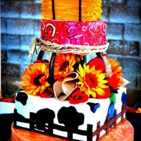 Wild West Wedding Cake The bride wanted something original and different... This is how it turned out