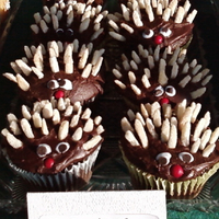 Hedgehog Cupcakes For a class cupcake fund raiser during the International Hedgehog show :)