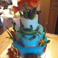 Ocean All edible! Fish and shark made from rkt covered with fondant, crab is sugarpaste.