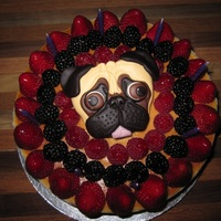 Pug Berry Cheesecake Thanks to Pegushga for posting the template and idea! My sister-in-law loved the pug.