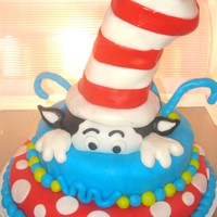 Cat In The Hat Cat in The Hat