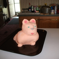 Cat Made for my oldest daughter's 8th b-day.