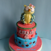 Owl Cake. bottom tier is after 8 chocolate cake, top tier is vanilla sponge. Owl is bottom half styrofoam and the head is fondant. I wanted to make...