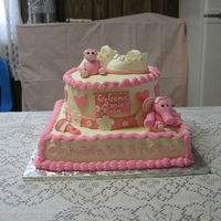 Baby Shower Baby shower for a little girl that made an early arrival. 12 in square WASC with raspberry cream filling and 8 in round chocolate with...