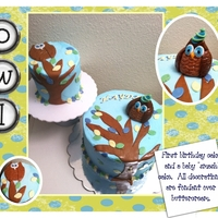 1St Birthday Owl