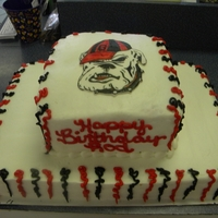 "Georgia Bulldogs Cake 8"" square on a 1/2 sheet. Basic cake but included on top is a hand-drawn Georgia Bulldog"