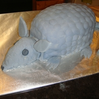 Armadillo Cake This cake was requested for a bachelorette party. It was my first time doing a scuplted cake!