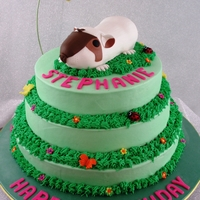 Guinea Pig Birthday Guinea pig is made with rice cereal treats. I used the shell shaped tool from Wilton to scrape out the hair lines.
