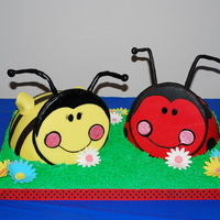 Lady Bug & Bumble Bee Lady Bug and Bumble Bee covered in fondant.