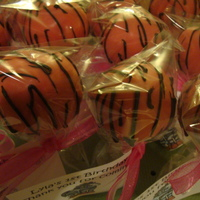 Hot Pink Zebra Cake Pops
