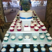 Peacock Feather Cupcake Display  *Peacock feather wedding cupcake display ....best photo i could get in front of the mirror ...still waiting on pics from brides...