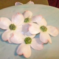This Cake Was For My Mother In Law Birthday Ive Been Practicing On Flowers These Are The Dogwood She Loved Them Thanks For Looking This cake was for my mother in law birthday. I've been practicing on flowers. These are the dogwood. She loved them. Thanks for...
