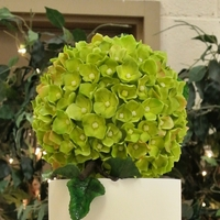Hydrangea Wedding Cake For Christine  Bride wanted a simple, but elegant wedding cake. Cake is 12?, 10?, 8?, 6? with a 6? hydrangea ball on top. The cake is frosted with swiss...