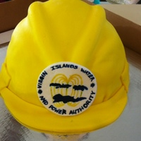 Hard Hat   Logo on the hard hat at the company