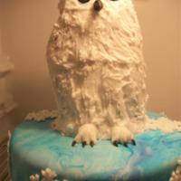Owl Birthday Cake   Snowy owl birthday cake. Bottom is wt cake fondant covered. top is carved chocolate cake covered in buttercream icing