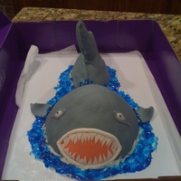 Sharky vanilla cake with peanutbutter buttercream and chocolate buttercream. then covered with fondant.
