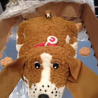 Puppy Cake For My Nephews Girlfriend This Was A Decoy For The Real Puppy That She Was Surprised With Bassett Hound She Was Thrilled By B Puppy cake for my nephew's girlfriend. This was a decoy for the real puppy that she was surprised with-Bassett hound. She was thrilled...