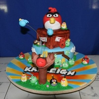Angry Birds Angry Birds cake bottom and middle layers were cake, big bird on top and all small birds and pigs were RKT covered in fondant. The nest,...