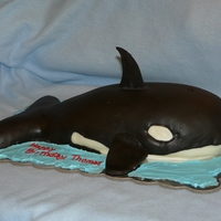 Orca Whale Cake Chocolate cake with buttercream covered in the true black MMF. For a 7 year old's birthday. TFL!