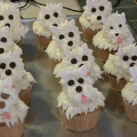 Puppy Cupcakes