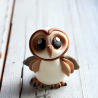 Little Barn Owl Cute Little Barn Owl -