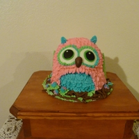 "Owl Smash Cake  smash cake for my great niece's first birthday. When my niece said she wanted teal, pink and green my first thought was "" how do..."
