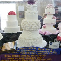 Royal Show My Perth Royal Show cake - Inspired by Peecheekeeno's cake - really happy how it turned out and excited that it won first place