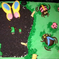 Its A Bugs Life This was for an 8 year old little girls birthday. She is taking a summer class studing bugs. The cake is strawberry, cream cheese icing. In...