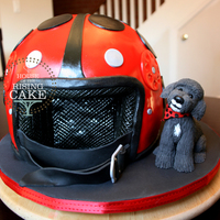 Lady Bug Helmet And Cole The Poodle  For my friend Leanne's birthday. This is her Vespa helmet and her puppy Cole. The cake was dark chocolate with homemade raspberry...