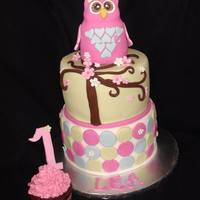1St Birthday Owl Cake *