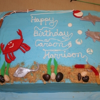 Fishing Birthday Cake This is a 9 x13 cake I did for my 2 sons for their birthday party. It is buttercream and MMF. A friend did fish cupcakes shown in one of...