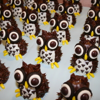 Whooo's Up For Cake?! These little owls were inspired by a large cake done in a popular parenting magazine. They are more like a cake pop consistency so I could...