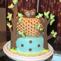 "Owl Shower Cake   Buttercream shower cake with a basket woven ""nest"" and gumpaste and fondant owl and trees. Made to match the shower invite."