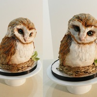 Owl Be There For You <3 Entirely cake :)