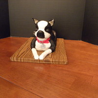 Boston Terrier I made this for my niece who has a Boston Terrier. Head and legs are RKT and body is cake. The whiskers were made with dry rice noodles.