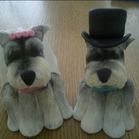 Miniature Schnauzer Cake Topper   I was asked to make these toppers for a wedding cake. they are all based on the couples actual dog