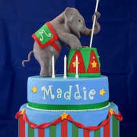 Circus Cake Cake for circus themed party. Elephant modeled out of RKT.