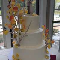 Colorado Aspen buttercream with custom made fondant aspen branches/fall leaves