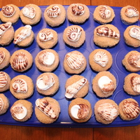 White Chocolate Seashells  These were some cupcakes I did for a beach themed party. The seashells are white chocolate but I brushed the molds with milk chocolate...