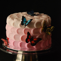 Butterfly Birthday I made this cake for my daughter's 2nd birthday. I saw the frosting technique done by others on this site and I decided to give it a...