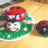 Ladybugs I made these cakes for a little girls 1st birthday. The large ladybug was for the adults to eat while the small ladybug was the the little...